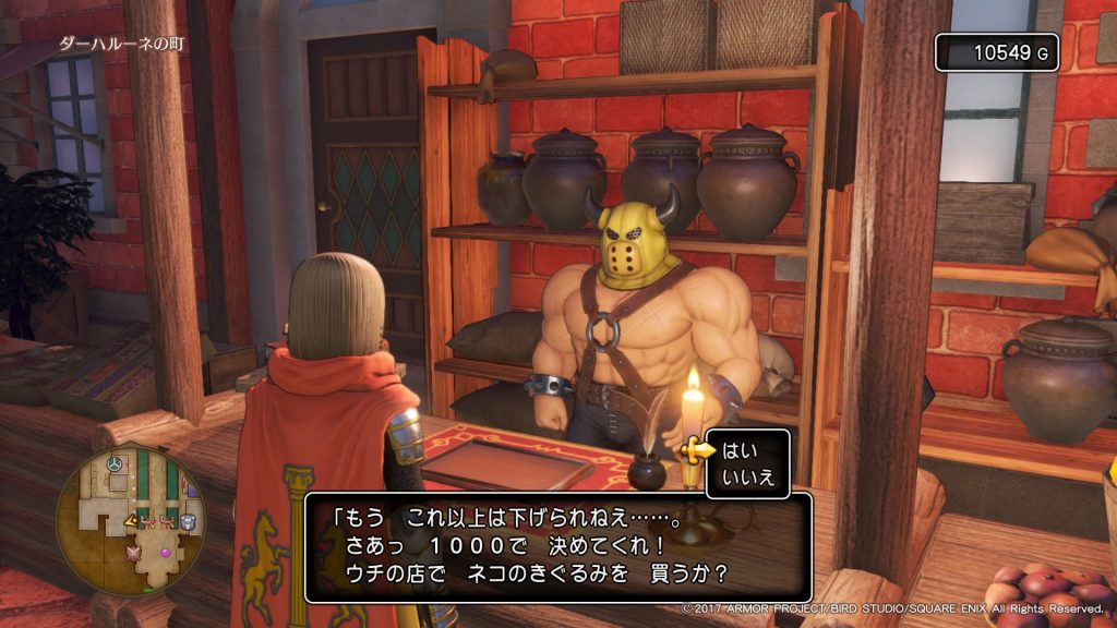 DQ11購入6