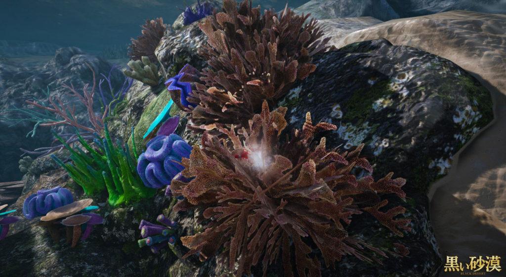 黒い砂漠海底の珊瑚