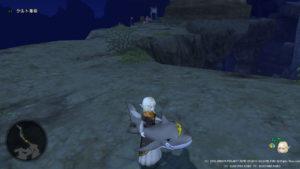 DQ10浮き輪親分ザメ